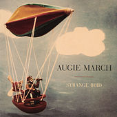 Strange Bird by Augie March
