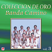 Que Falta Me Hace Mi Padre by Banda Camino
