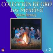 Mi Destino Fue by Los Mendivil