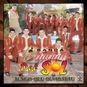 Tengo Que Olvidarte by Banda La Original Del Sol
