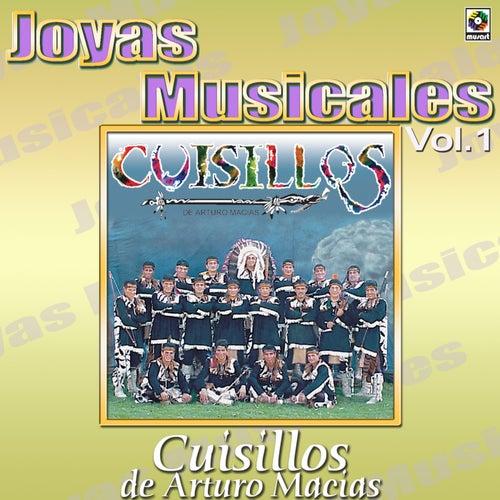 Al Ritmo De Vol.1 by Banda Cuisillos