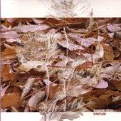 Herbstlaub by Marsen Jules