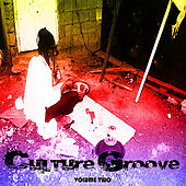 Culture Grooves 2 by Various Artists