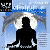 The Dolphin Experience by Medwyn Goodall