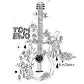 Barnstomer by Tom Eno