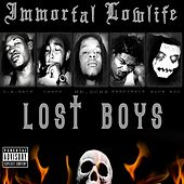 Lost Boys by Various Artists