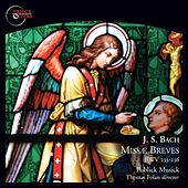 Bach: Missæ Breves, BWV 233-236 by Publick Musick Orchestra