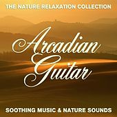 The Nature Relaxation Collection - Arcadian Guitar / Soothing Music and Nature Sounds by Various Artists