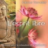 L'esprit libre : Musique pour relaxation et méditation by Fabrice Tonnellier