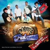 Corridos by Palomo