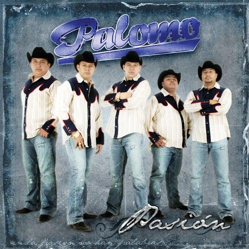 Pasión by Palomo