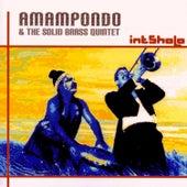 Intsholo by Amampondo