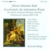 Bach, J.S.: Geschwinde, Ihr Wirbelnden Winde / Oboe D'Amore Concerto, Bwv 1055 von Various Artists