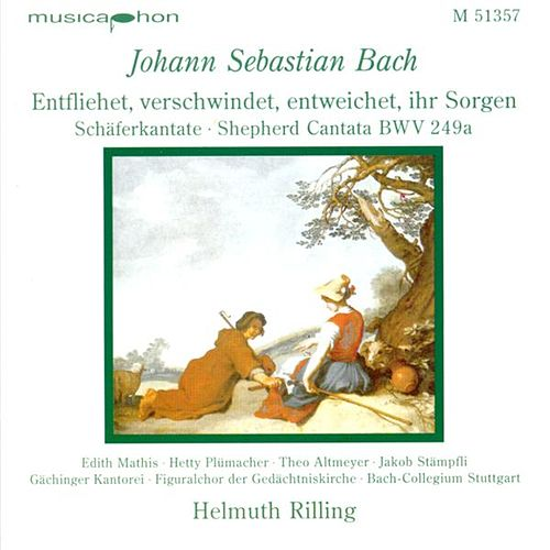 Bach, J.S.: Entfliehet, Verschwindet, Entweichet, Ihr Sorgen / Concerto for Oboe and Violin in D Minor by Various Artists