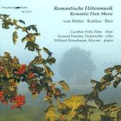 Weber, C.M. Von: Flute Trio, Op. 63 / Ries, F.: Flute Sonata, Op. 169 / Kuhlau, F.: Variations, Op. 63 by Gunther Pohl