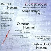Hummel, B.: Contrasts / Concertino for Bassoon and Strings, Op. 27B / Hummel, C.: 8 Musiken Fur 9 Streicher by Various Artists