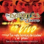 Como Tu los Querías Oír En Vivo by Los Dareyes De La Sierra
