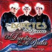 Dueña De Mi Vida by Los Dareyes De La Sierra