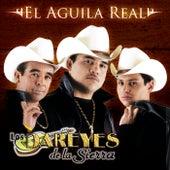 El Águila Real by Los Dareyes De La Sierra