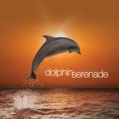 Dolphin Serenade by Keith Halligan