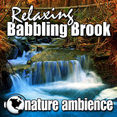 Relaxing Babbling Brook (Nature Sounds) by Nature Ambience