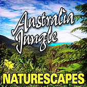 Australia Jungle (Nature Sounds) by Naturescape