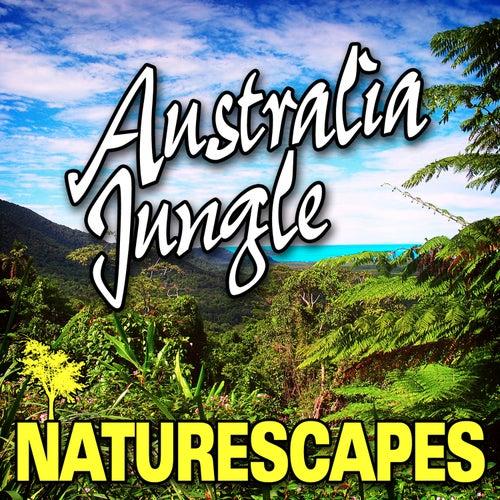 Australia Jungle (Nature Sounds) by Naturescape
