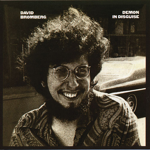 Demon In Disguise by David Bromberg