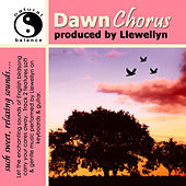 Dawn Chorus by Llewellyn