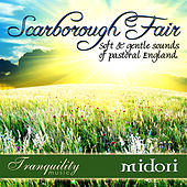 Scarborough Fair by Midori