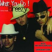 Breezy - Single by Latino Velvet