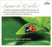 Kommt ihr G'spielen by Various Artists
