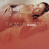 Officially Missing You - The Remixes by Tamia