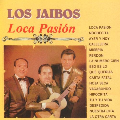 Loca Pasión by Los Jaibos
