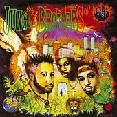 Done By The Forces Of Nature by Jungle Brothers