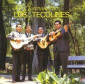 Serenata con Los Tecolines by Los Tecolines
