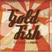 Perceptions Of Pacha by Goldfish