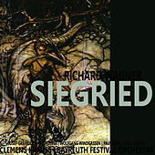 Wagner: Siegfried by Bayreuth Festival Orchestra