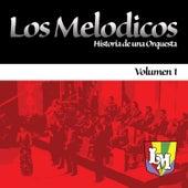 Historia De Una Orquesta 1 by Los Melodicos
