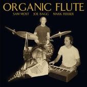Organic Flute by Mark Ferber