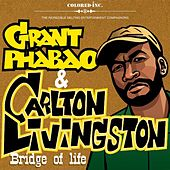 Bridge Of Life by Carlton Livingston