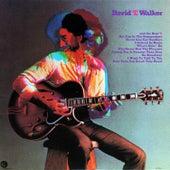David T. Walker by David T. Walker