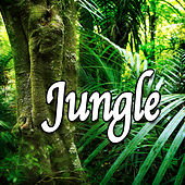 Jungle (Nature Sounds) by Natural Sounds