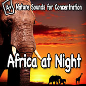 Nature Sounds for Concentration – Africa at Night by Study Music