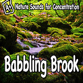 Nature Sounds for Concentration – Babbling Brook by Study Music
