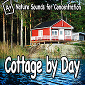 Nature Sounds for Concentration – Cottage by Day by Study Music