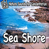 Nature Sounds for Concentration – Sea Shore by Study Music