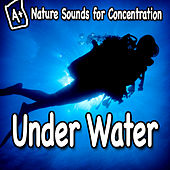 Nature Sounds for Concentration – Under Water by Study Music