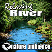 Relaxing River (Nature Sounds) by Nature Ambience
