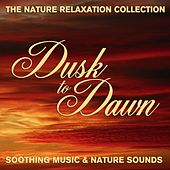 The Nature Relaxation Collection - Dusk To Dawn / Soothing Music and Nature Sounds by Various Artists